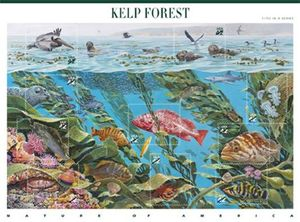 Kelp forest stamps