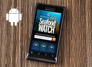 Droid Seafood Watch app