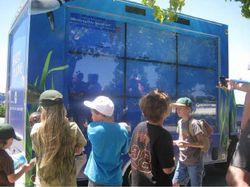 Aquarium truck 1